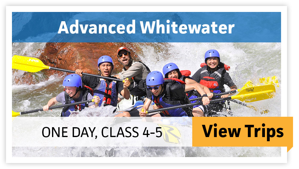 Advanced Whitewater - One Day, Class 4-5 - VIEW TRIPS