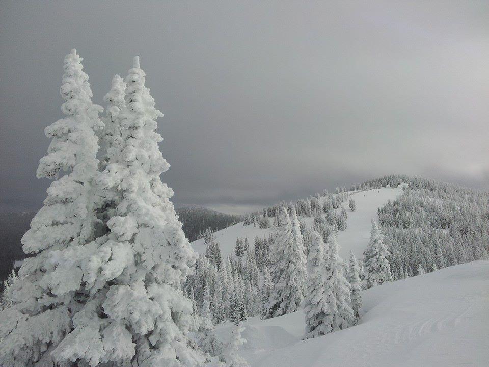 January 2019 Snowpack.